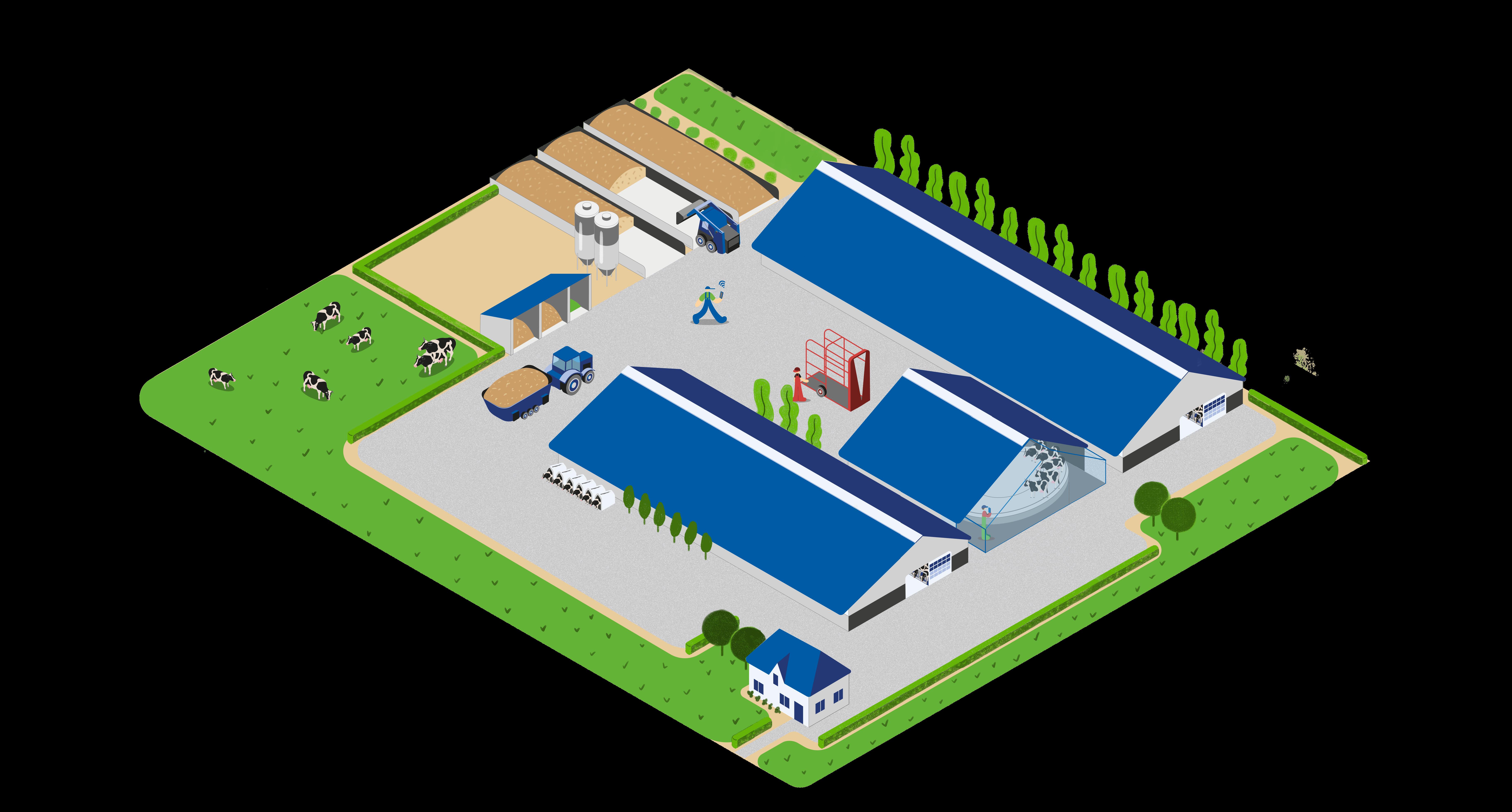 dairy farm of the future feeding cows